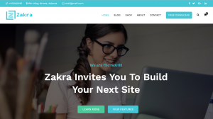 Zakra Free WordPress Templates